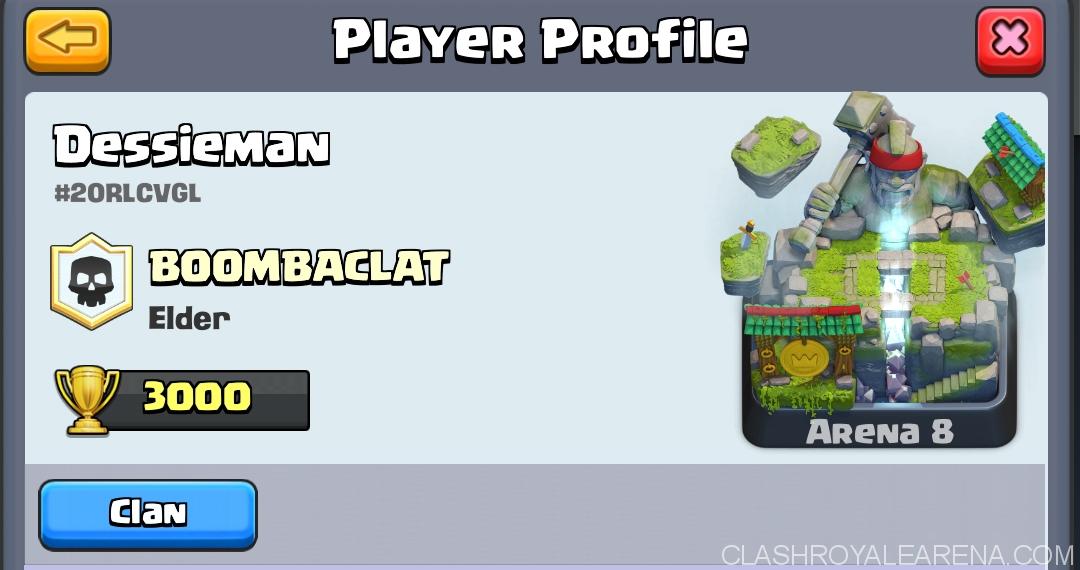 Dessieman-profile