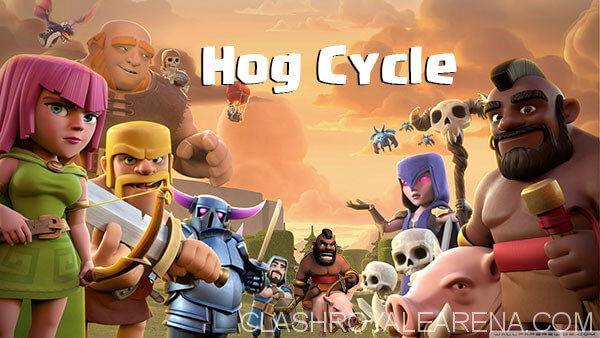 Hog Cycle